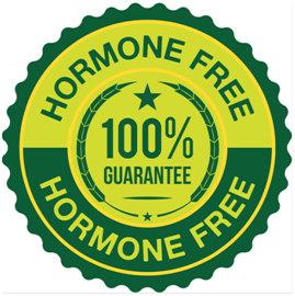 HORMONES IN FOOD… SHOULD YOU WORRY?