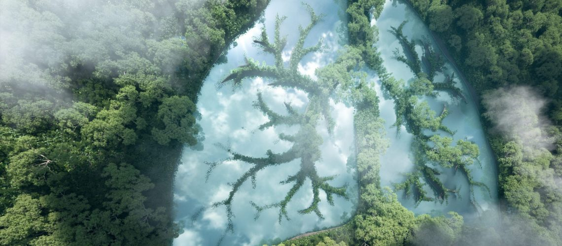 Green lungs of planet Earth. 3d rendering of a clean lake in a shape of lungs in the middle of  virgin forest. Concept of nature and rainforest protection, nature breathing and natural co2 reduction.